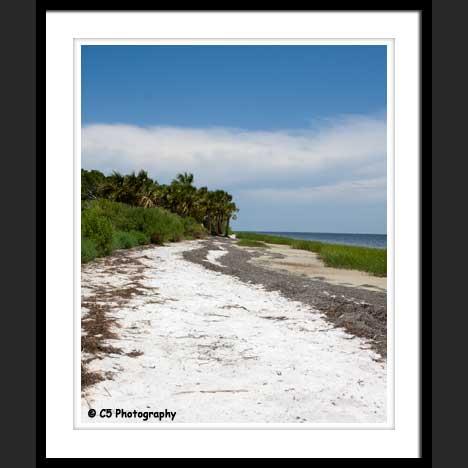 Florida Beach Photograph Gallery