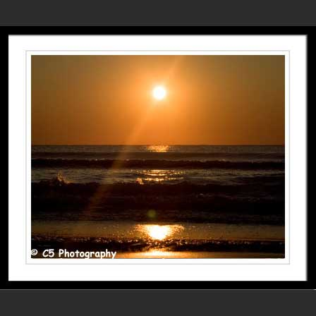 C5 Photography - Virginia Beach 003