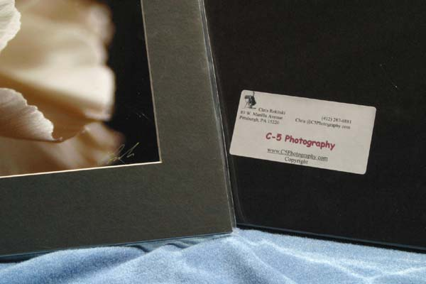 C5 Photography - Label