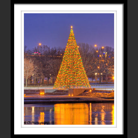 Pittsburgh - Christmas Tree at the Point