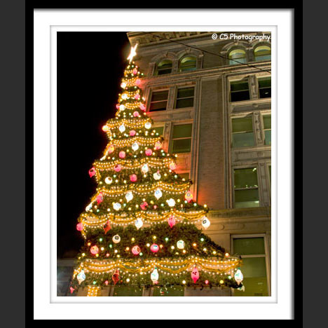 Pittsburgh Hornes Christmas Tree