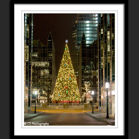 Pittsburgh PPG Skating Rink Tree