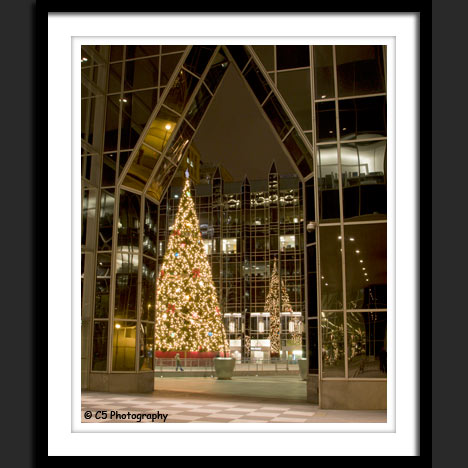 Christmas Tree at PPG Building