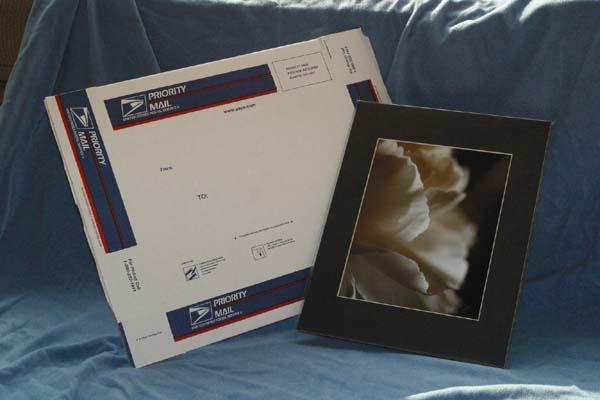 C5 Photography - Print & Shipping Box
