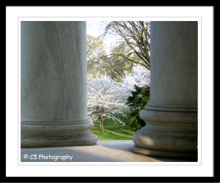 C5 Photography - Jefferson Memorial 001c