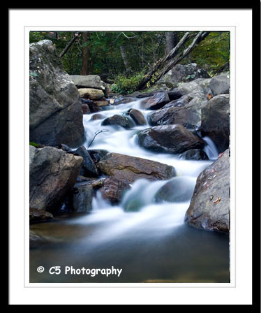 C5 Photography - New River Gorge Photographs