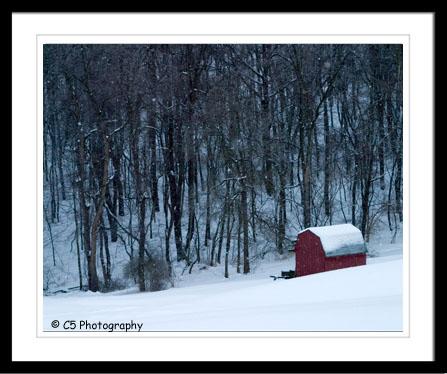 C5 Photography - Scenic 022