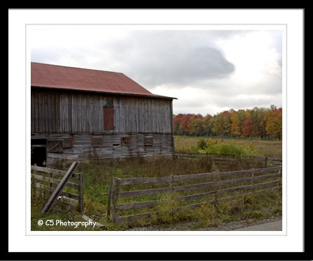 C5 Photography - Autumn Scenic 023a